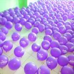 balon sablon alice