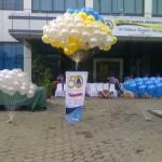 balon pelepasan murah